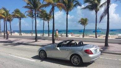 Photo of Visiting Miami? You Should!