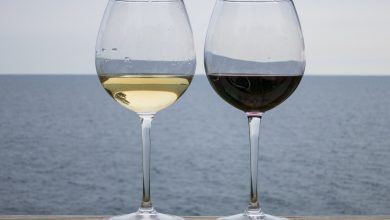Photo of Red Wine vs White Wine