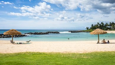 Photo of Why you should visit Hawaii