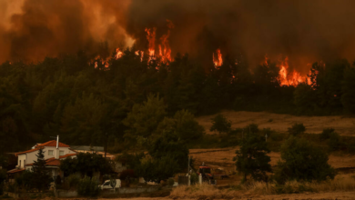 Photo of The disastrous wildfires in Greece